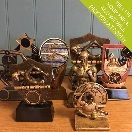 Budget Swimming Trophy Awards